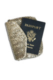 Passport in Women's Silver Clutch Purse