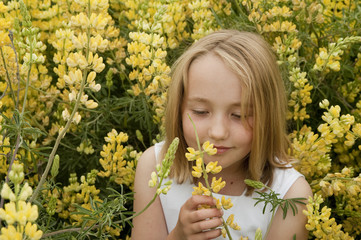 blonde little girl smelling yellow spring wildflowers