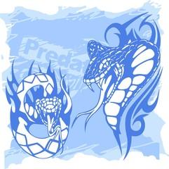 Snake and Python.