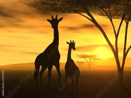 Leinwanddruck Bild Spirit of Africa