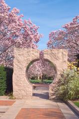 Garden at the Smithsonian;