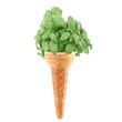 gelato al basilico