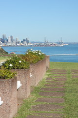 View from Bastion Point Auckland