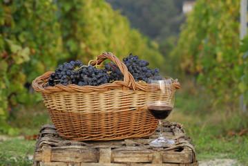 Cesta de uvas frescas.