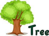 Fototapety alphabet  T for tree