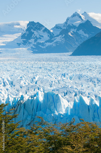 Perito Moreno Glacier, Patagonia, Argentina - 21765490