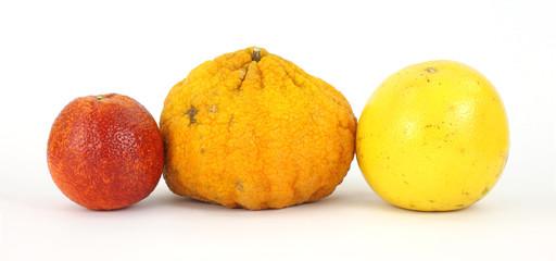 Blood orange, ugly fruit and grapefruit