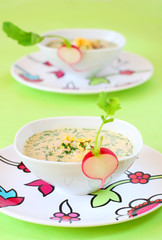 summer cold soup( okroshka)