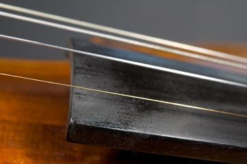 Detail des Griffbretts einer Geige
