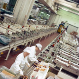 Fototapety production line in a food industry