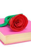 dia de las rosas y libros poster