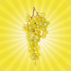 Weintraube mit gelben Strahlen im Hintergrund, retro
