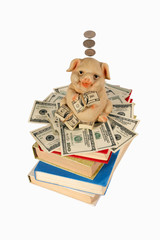 Piggy Bank with flying money staying on the books