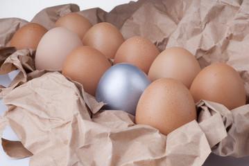 silver egg innovation