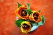 Tulpen auf dem Tisch