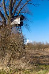 Anitz am Rande des Vogelreservats in Windischleuba