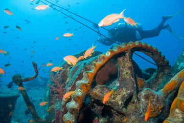 Scuba Diver with Camera and Wreck