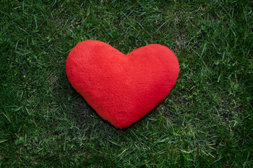 lonely heart on a green background