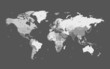 Gray detailed World map