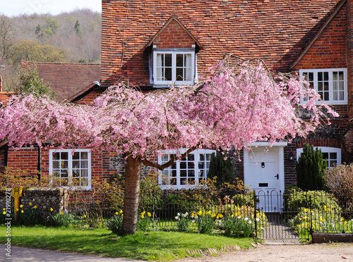 Traditional English Village Cottage