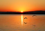 Fototapeta słońce - woda - Plaża