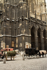 Stephansdom, Vienna