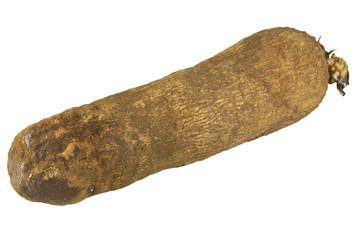 Patata del Ghana 01 04 10