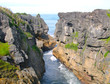 Pancake Rocks at Punakaiki, West Coast of South Island, New Zeal