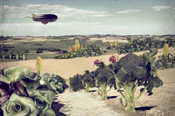 Paesaggio surreale verdure vintage