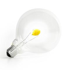 Lampadina limone