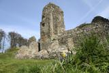 berkhamsted castle ruins hertfordshire poster