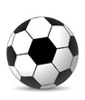 soccer ball in white and balck colors