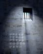 jailhouse cell door