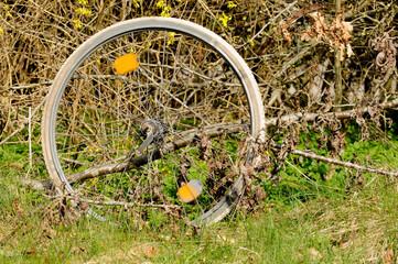 Weggeworfene Reifen