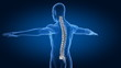 Correct posture concep tin rotation