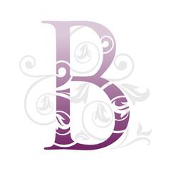 letra b be