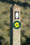 Welsh nature trail sign post with acorn poster