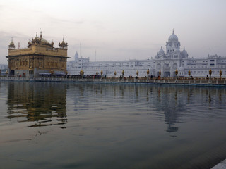 Early Morning at Amritsar 6