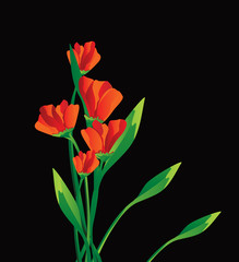 vector red flowers