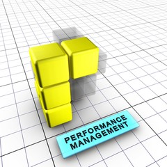 5-Performance management (Integrated risk management 5/6)