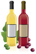 Red & White Wine Bottles