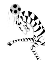zebra.football