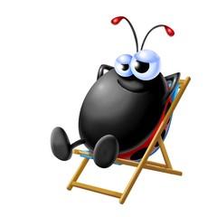 ladybug on holiday