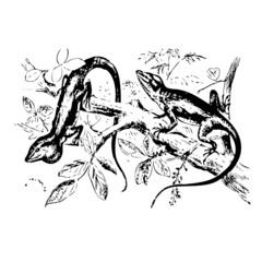 reptile, vecteur