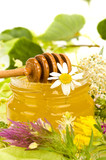 miscellaneous herbs honey poster
