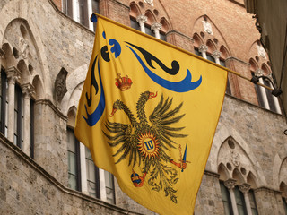 Siena - Contrada dell Aquila flag