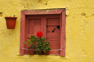 Old window on yellow wall, Tenerife island