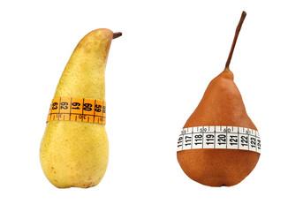 Body Circumference