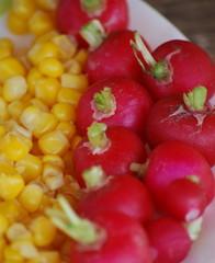 radis et maïs