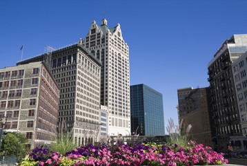 Flowers in downtown Milwaukee